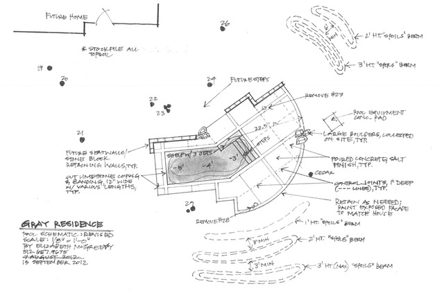 Swimming pool layout elizabeth mcgreevy for Swimming pool design layout